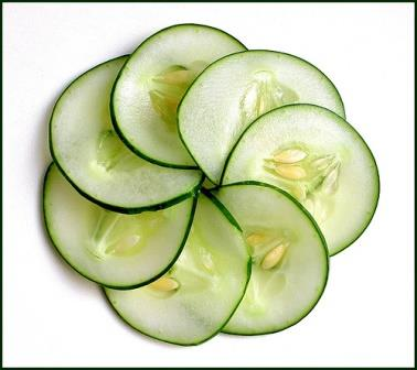 cucumbers for web